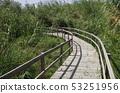 [요르단] 아즈랏쿠 습지를 지나는 산책로 53251956