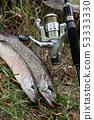 魚 釣魚 捕魚 53333330