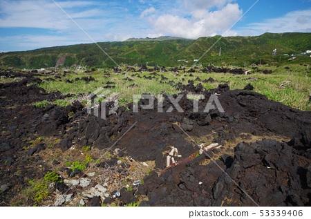 미야케 지마의 초원과 용암 53339406
