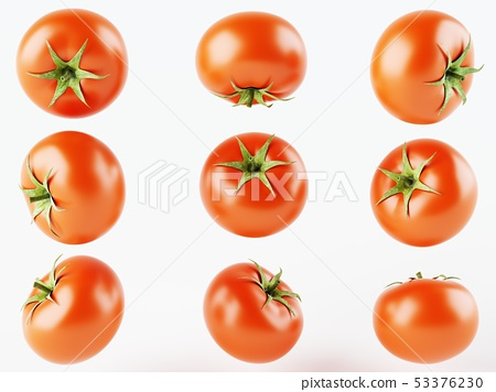Set of nine isolated tomatoes on a white 53376230