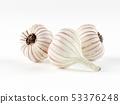Three heads of garlic isolated on white 53376248