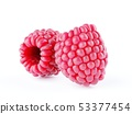 Isolated berries. Two raspberry fruits isolated on 53377454