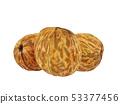 Three Greek walnuts on a white background 53377456