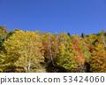 志賀高原Kido池塘 53424060