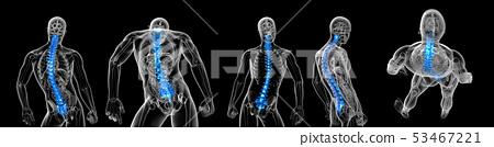 3d rendering medical illustration of the vertebral 53467221
