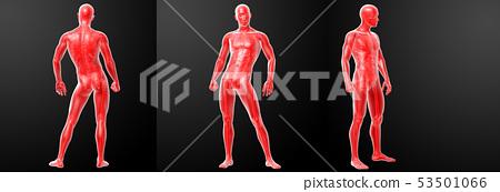 3d rendering illustration of human 53501066