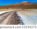 View of the dormant volcano Tunupa 53594273