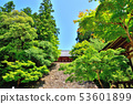 京都Takaosan Jingoji的藍色楓樹 53601899