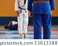 Two judo fighters or athletes greeting each 53613388