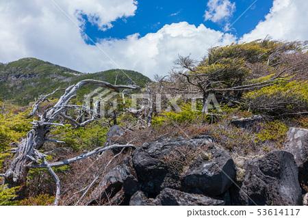 안뜰 자연 공원 : 북 타케 로프웨이 지노시 53614117