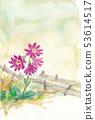 Hakusan Kozakura blooming in the Ose Back Pass 53614517