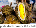 Fresh durian fruit from the durian garden for sale 53615148
