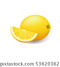 Realistic bright yellow lemon whole and sliced vector 53620362