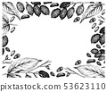 Hand Drawn Frame of Galip Nuts and Almonds 53623110