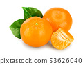 tangerine or mandarin fruit with leaves isolated on white background 53626040