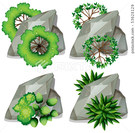 Set of nature rock and plant 53628129