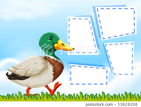 Duck on nature note template 53628208
