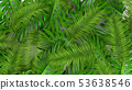 3D render of realistic palm leaves on white background for cosmetic ad or fashion illustration 53638546
