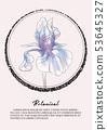 Iris flower watercolor decoration. Botany spring  53645327
