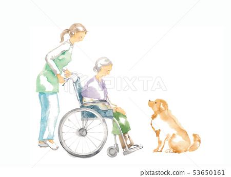 휠체어 할머니 간호와 개 53650161