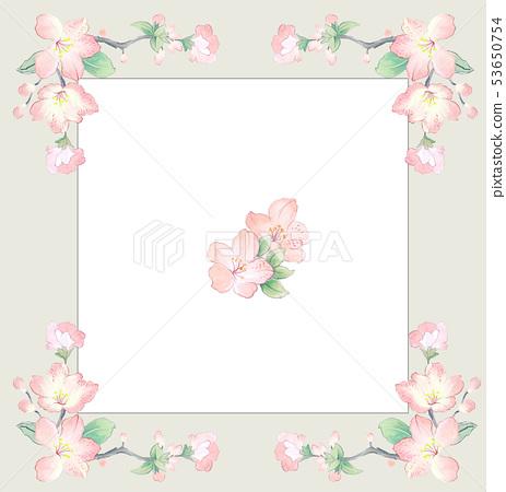 優雅美麗的水彩花卉組合 53650754