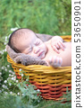 Asian newborn. Lovely kid and little chil 53650901