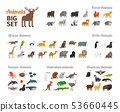 Animals in flat style 53660445