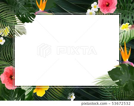배경 - 여름 - 열대 - 열대 - 몬스 테라 - 메리아 - 히비스커스 - 프레임 53672532