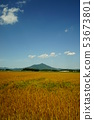 筑波山和麥田 53673801