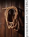 horseshoe and lasso 53673862