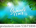 夏天 夏 背景 53673896