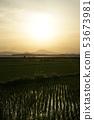 쓰쿠바과 전원 풍경 53673981