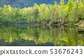 新鲜的绿色Norikura高原湖边树在湖 53676243