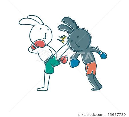 愚蠢的兔子踢拳擊 53677720