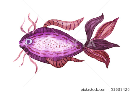 Isolated watercolor fish 53685426