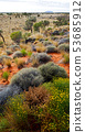 wilderness environment in the landscape outback 53685912