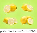 Lemon fruit set 53689922