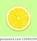 Lemon slice fruit 53690209
