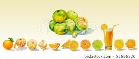 Painting summer orange collection, isolated. 53696520