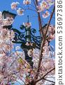 다카라즈카 꽃의 길의 가로등과 벚꽃 53697386
