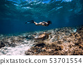 Woman freediver glides underwater with sea turtle 53701554