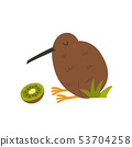 Kiwi bird and fruit isolated on white background 53704258