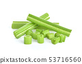 celery isolated on white background 53716560