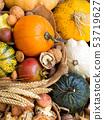 Autumn background 53719627
