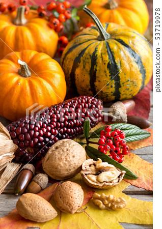 Autumn composition 53719978