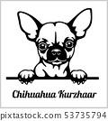 Chihuahua Kurzhaar - Peeking Dogs - breed face head isolated on white 53735794