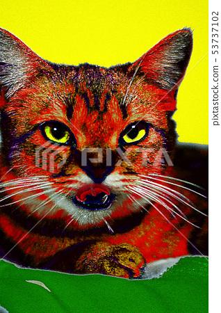 Art Cat 53737102