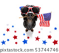 independence day 4th of july dog 53744746
