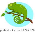 Chameleon sitting on a tree branch. 53747776