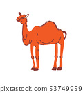 Camel Wild Exotic African Animal Vector Illustration 53749959
